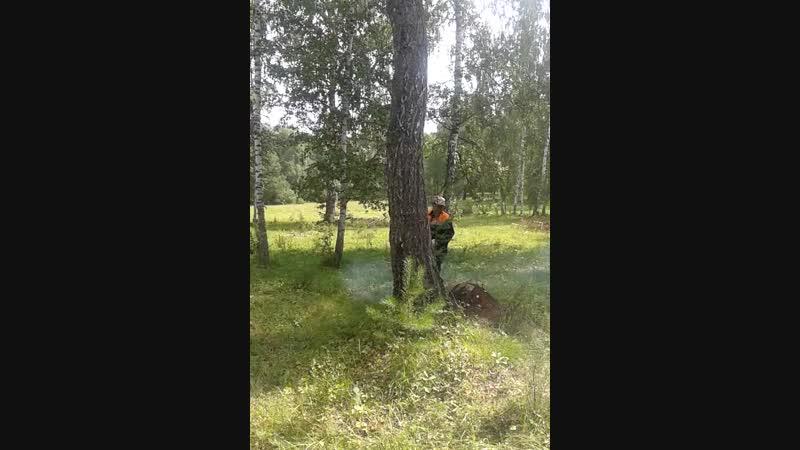 ағас йығыу
