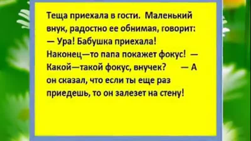 видеооткрытка бабоньки юморнем mp4