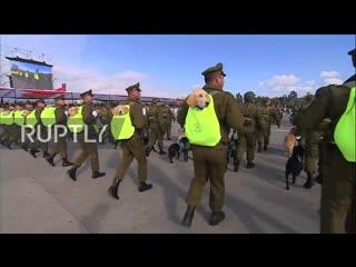 В чили прошёл военный парад со щенками в рюкзаках