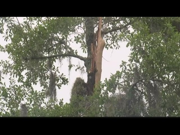 1 dead 2 hurt after lightning strike at 4th of July cookout in South Carolina