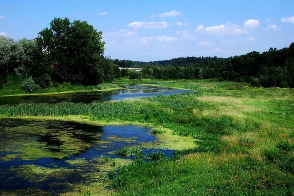 Почему маленькие речки зарастают и превращаются в ручьи и болота В каждом районе находится множество небольших речушек. Назвать их реками язык не повернётся, на столько они узкие и