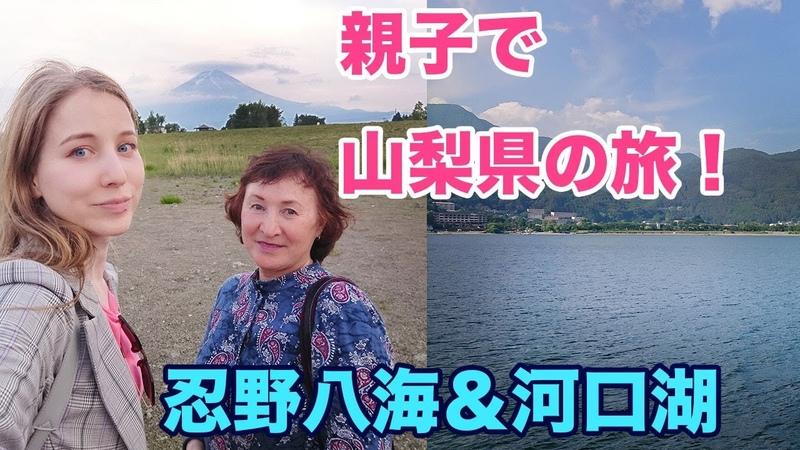 親子で山梨の旅!忍野八海&河口湖!富士山の絶景!