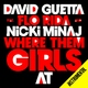 David Guetta/Akon - Crank It Up (Nothing But The Beat, 2011)
