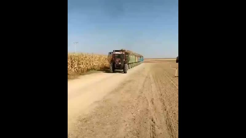 Farmpreneur InstaUtility 00 B6hUSNdH6 s 11