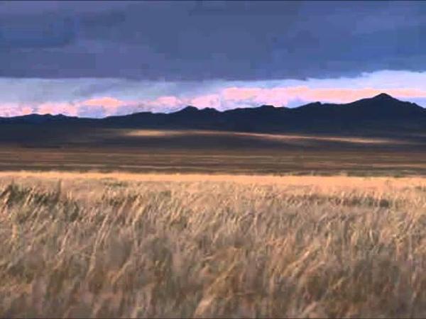 Borodin In the Steppes of Central Asia Polovtsian dances Svetlanov