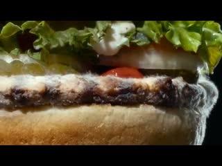 Burger King прорекламировали заплесневевший бургер