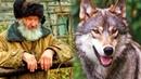 Дедушка спас беззащитного волчонка в лесу А когда волчонок вырос отплатил своему спасителю добром
