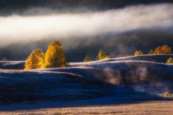 Алтайское утро Фото: Владимир Ляпин