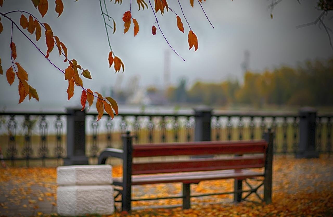 План проведения мероприятий в Таганроге с 11 по 17 ноября 2019 года
