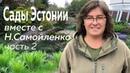 Сады Эстонии вместе с Н Самойленко Часть 2