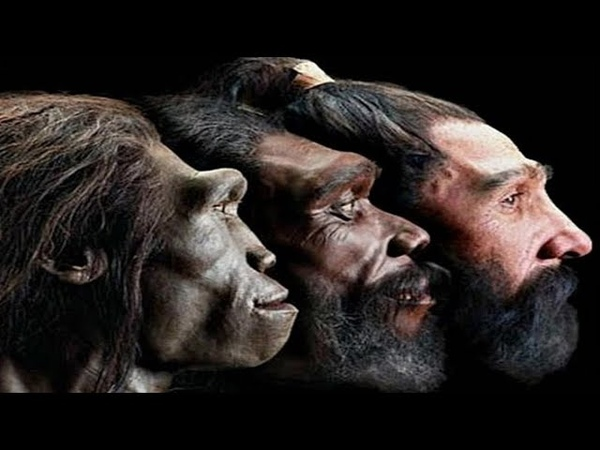 National Geographic Происхождение Человека С точки зрения науки