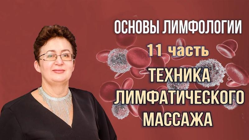 Основы лимфологии Лимфатическая диагностика Шишова Ольга часть 11