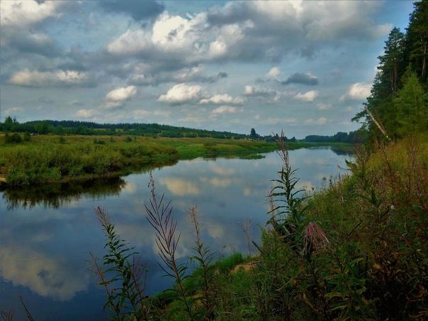 Река молога рыбалка вологодская область