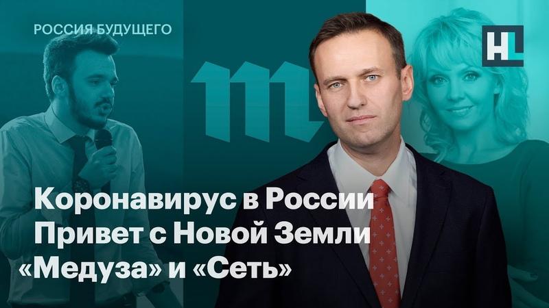 Коронавирус в России привет с Новой Земли Медуза и Сеть