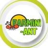 """Муравьиные фермы""""FARMiNi-ANT""""-твоя цивилизация"""