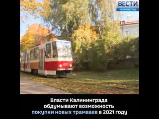 Власти Калининграда обдумывают возможность покупки новых трамваев в 2021 году