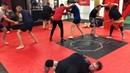 """Академия ММА Гладиатор on Instagram 🤼♂️Схватки в конце тренировки по бразильскому джиу джитсу …"""""""