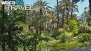 Die Provinz Alicante Palmen Turrón Flamingos und die Berglandschaft der Costa Blanca