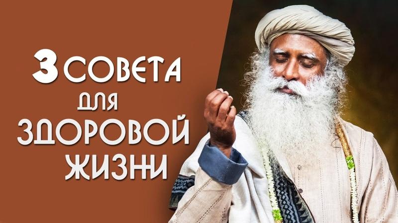 Для здоровой жизни делай 3 вещи каждый день - Садхгуру на Русском