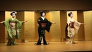 Kyoto maiko  Takeshigero2 京都・舞妓