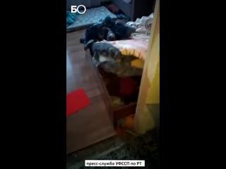 Должник по алиментам спрятался от приставов в кровати