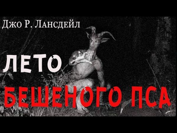 ЛЕТО БЕШЕНОГО ПСА аудиокнига ДЖО Р ЛАНСДЭЙЛ фантастика приключения триллер
