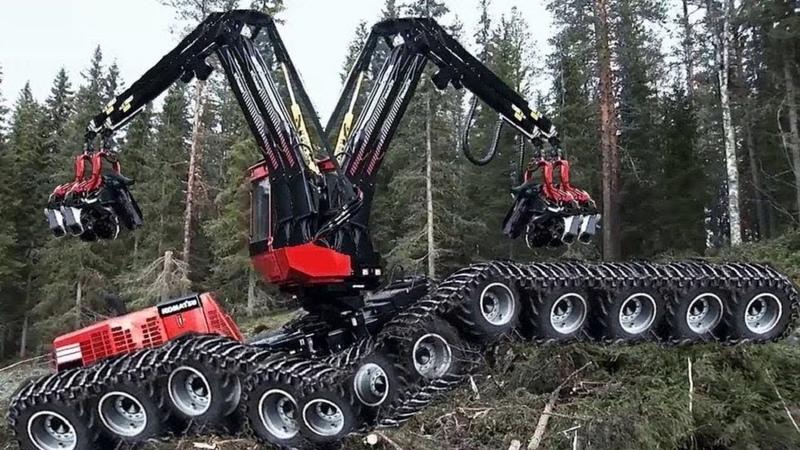 Dangerous Fastest Chainsaw Cutting Tree Machines Big Felling Tree Heavy Equipment Machine