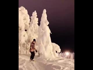 Exploring a winter wonderland in the Arctic Circle