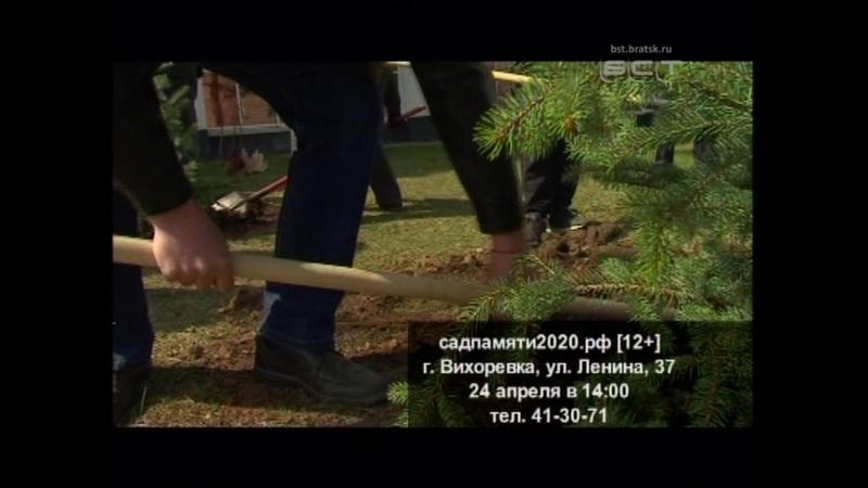 Братчан приглашают присоединиться к акции Сад памяти и вместе высадить 27 миллионов деревьев