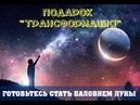 Подарок «Трансформация». Готовьтесь стать Баловнем Судьбы