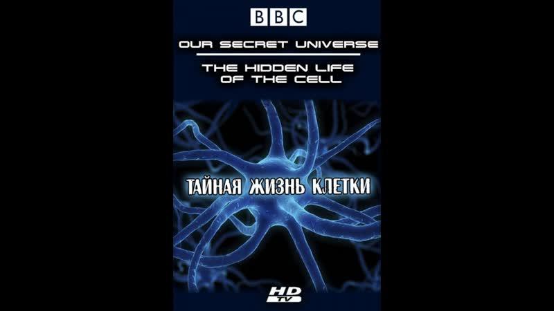 BBC Внутренняя Вселенная Тайная жизнь клетки Universe The Hidden Life of the Cell