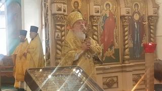 Проповедь Владыки Димитрия . Зв всё взыщет Господь.