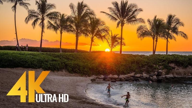4K UHD Top Oahu Beaches Hawaii Documentary Film Part 2 1 Hour Video