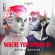 R3HAB, Елена Темникова - Where You Wanna Be