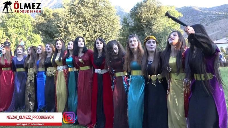 Saffet Medine düğününden genç kızların halayı xerzani Kurdish wedding