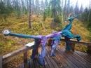 Многие наши гости спрашивают, почему в нашем лесу обитают странные существа, внеземные  пришельцы и