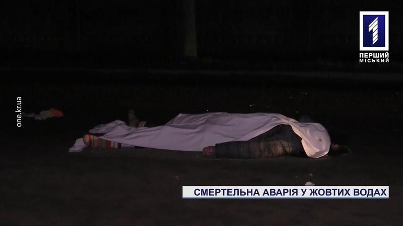Смертельна аварія поблизу Кривого Рогу