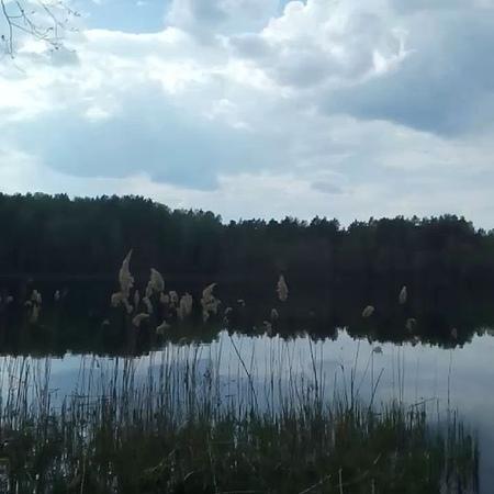 Yurieva_tg video