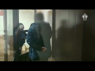 Убийство лосихи: по делу о незаконной охоте арестованы жители Тверской и Ярославкой областей
