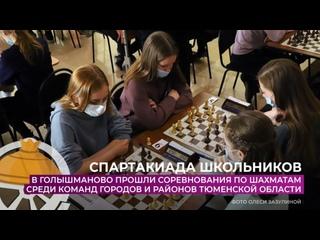 В Голышманово прошли соревнования по шахматам среди команд городов и районов Тюменской области