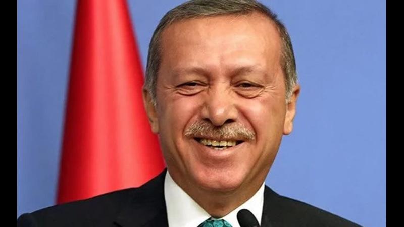Д. Виноградов. А Васька слушает, да ест почему Евросоюз не может повлиять на Эрдогана