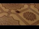 Незваные гости как избавиться от тараканов