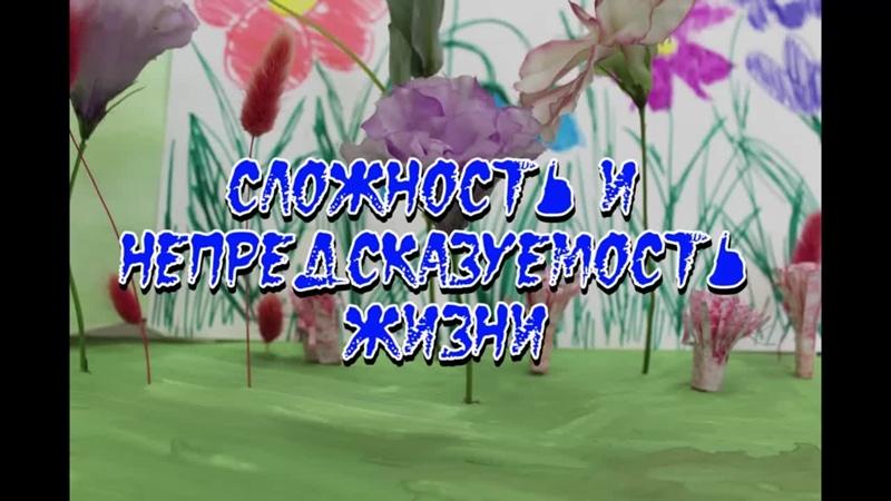 Санкт Петербург ЧОУ Школа Дипломат Сложность и непредсказуемость жизни