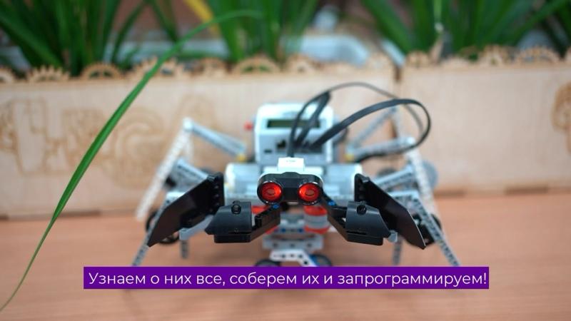 Видео от ЛИГА РОБОТОВ робототехника для детей