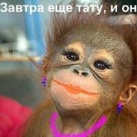Фото Ларисы Подобедовой ВКонтакте