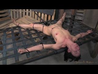 SexuallyBroken - February 19, 2014 - Elise Graves - Matt Williams - Jack Hammer (BDSM / БДСМ / Порно)