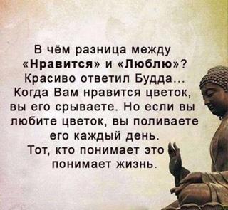 Алина Волкова фотография #17