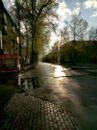 Ренц Алексей | Новокузнецк | 36