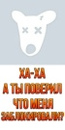 Персональный фотоальбом Тимура Кисметова