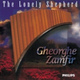 James Last, Gheorghe Zamfir - Last: The Lonely Shepherd